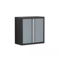 NewAge Wall Cabinet 2-Door-Assembled-PRO Series